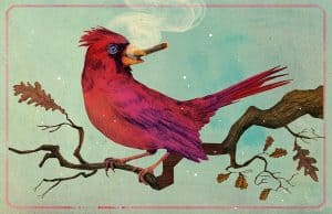 'Rotkardinal' limitierter Kunstdruck von Marco Wagner